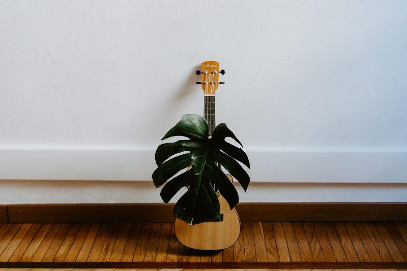 ukulele bambini